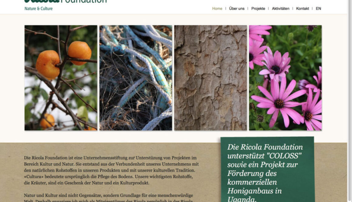 screenshot website ricola foundation
